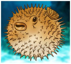 how-to-draw-a-blowfish_1_000000004673_3.jpg